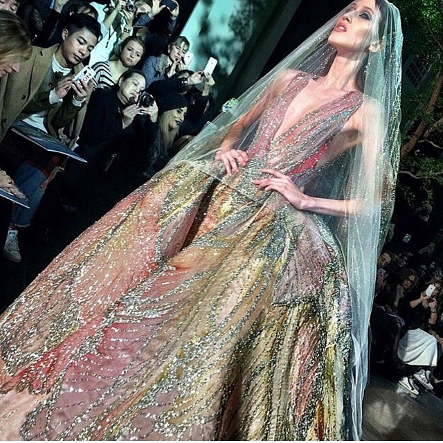 Elie Saab Photo Credit via Instagram
